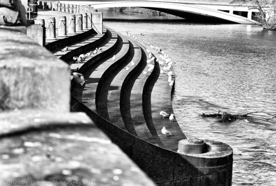 River Derwent Steps