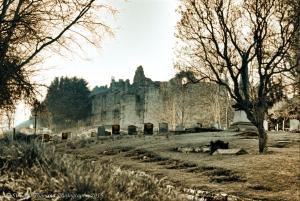 Tutbury Castle Duotone