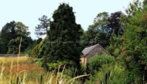 View From Tissington Garden Centre